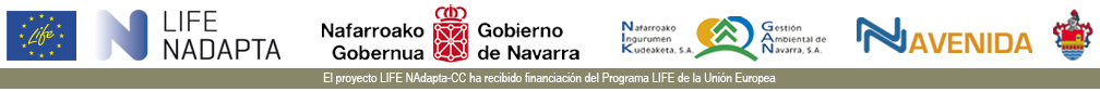 AVENIDA CAPARROSO Logo